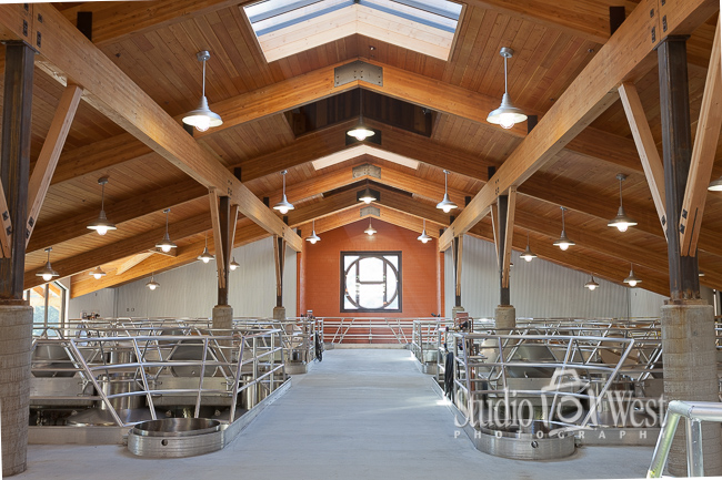 Wood Beam Construction Photos - Paso Robles Winery Photography - Studio 101 West Photography